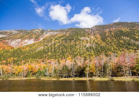 Autumn Landscape In White Mountain National Forest, New  Hampshire