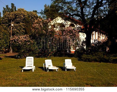 Plastic loungers on lawn grass near cottage