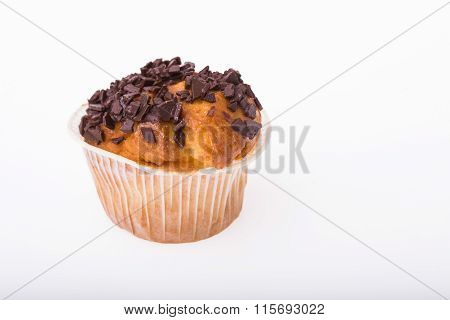 Traditional American Muffin