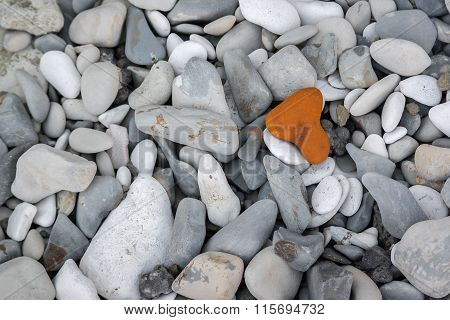 Individual Different Concept Stone At Sea Beach