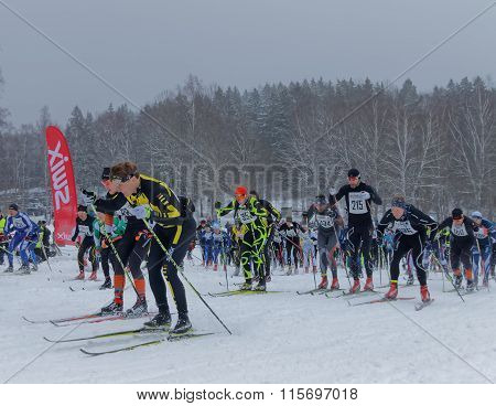 Side View Of Large Group Of Colorful Cross Country Skiers