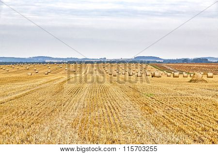 Hdr Shot Of A Harvested Field In Summer