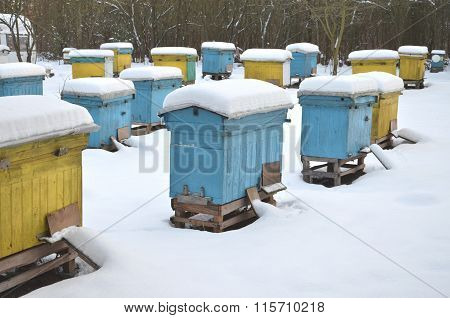 Beehives in apiary covered with snow in wintertime