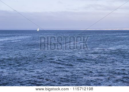 Isolated yacht sailing in the blue Atlantic Ocean near Monterey California
