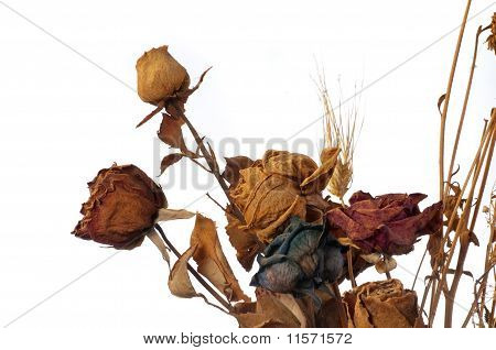 A Bouquet Of Withered Roses And Flowers