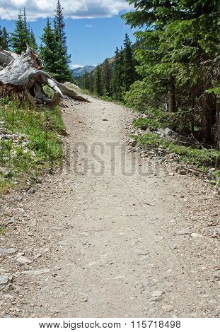 Hiking Path In Rocky Mountain National Park
