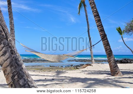 Hammock attached to palm trees on a beach resort in Hawaii