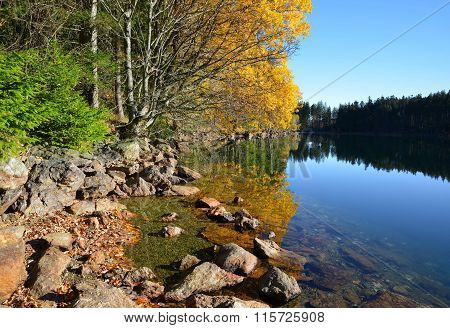 Black Lake - Czech republic