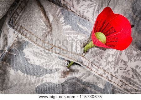 The red poppy is a symbol of Thailand Veterans Day