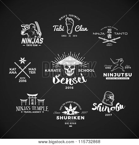 Set of Ninjutsu Logo. Sensei skull t-shirt illustration concept on gray background. Japanese Katana