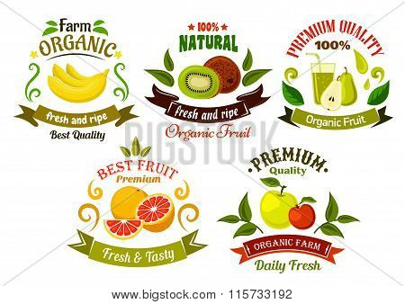 Organic fresh fruits emblems and symbols