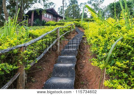 Long Concrete Stairway