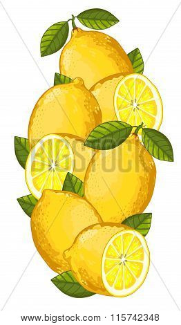 Lemon isolated, Vector, composition.