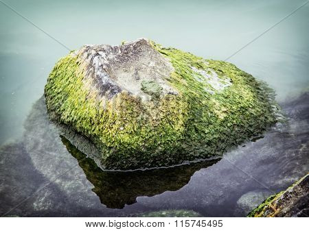 The Weed Overgrown Stone In The Lake, Natural Scene