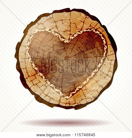 Detailed beautiful wood crosscut with a heart