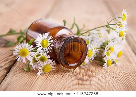 Drop Of Massage Oil In A Glass Bottle With Camomile Flowers On Wooden Table