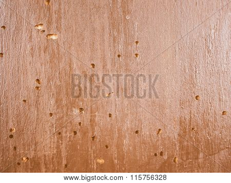 Wood Damaged By Furniture Beetle Vintage