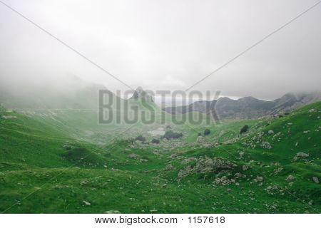 Wild Fog Mountains