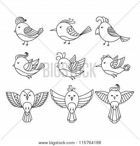Set of 9 cute birds in vector