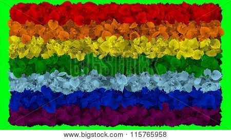 LGBT flag, rainbow flag made from leaves