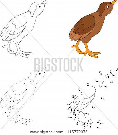 Cartoon Poult. Vector Illustration. Dot To Dot Game For Kids