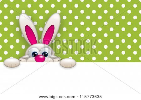 Easter Bunny Holding Empty Banner Over Green