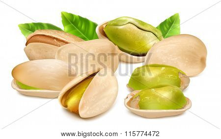 Pistachio nuts with leaves. Vector illustration. Fully editable handmade mesh.
