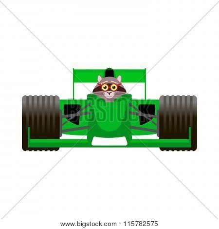 Raccoon Driving A Green Racing Bolide Car