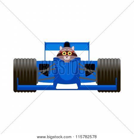Raccoon Driving A Blue Racing Bolide Car