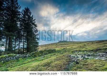 Panoramic View On Moorland In Devon, Uk