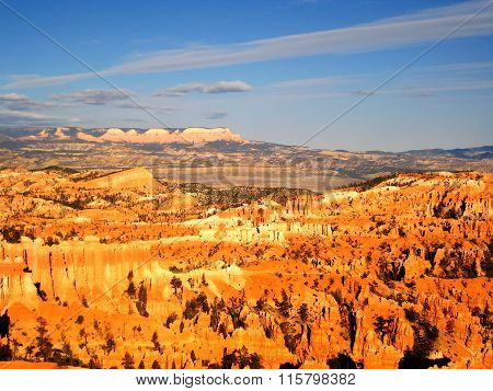 Bryce canyon in the morning light (USA)