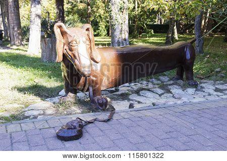 The Dog Is A Dachshund. Sochi, Russia