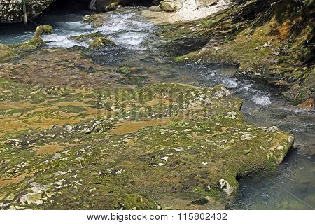 Water flows between stones and moss