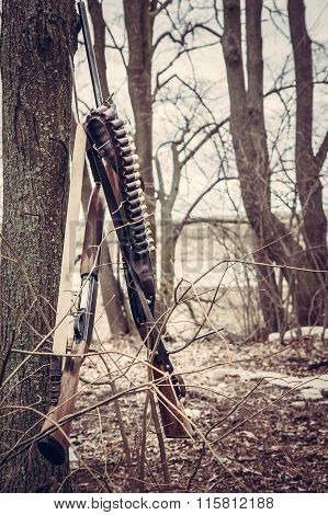 Hunting shotguns with ammunition belt in forest after hunt