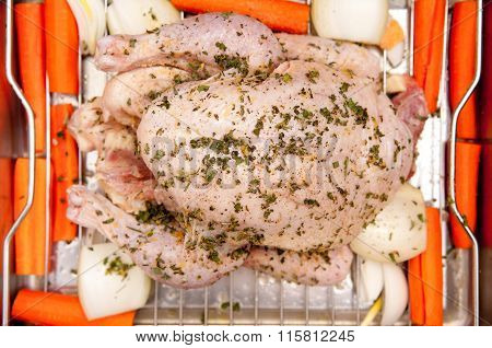 Raw Whole Organic Chicken