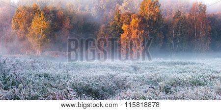 Foggy Autumn Sunrise