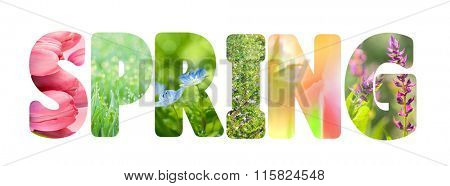 Word Spring with colorful nature images inside the letters, fresh grass and flowers photos, on white background, horizontal