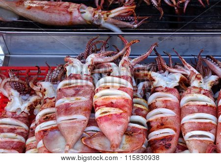 Grilled Squid For Sale