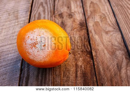 A rotten orange on wooden background. Spoiled food. Mold on food.