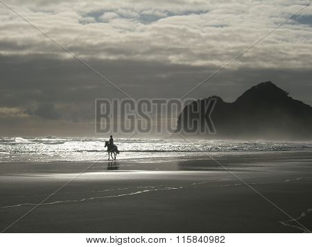 Single horse rider on an empty beach
