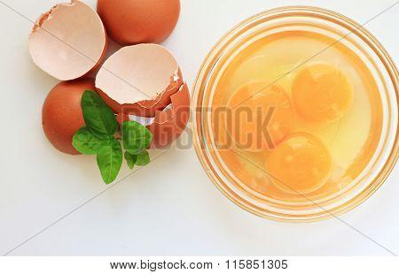 Sunny yolks