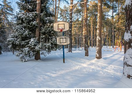 Basketball Hoop In The Winter Forest.