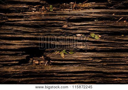 Wood Texture, With Weathered Look, Old And Green
