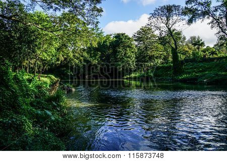 Meandering Stream With Trees And Blue Sky