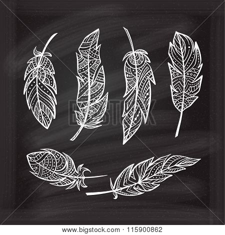 Vector Chalk Zendoodle Feathers Set.