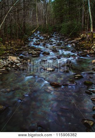 small stream smoky mountains