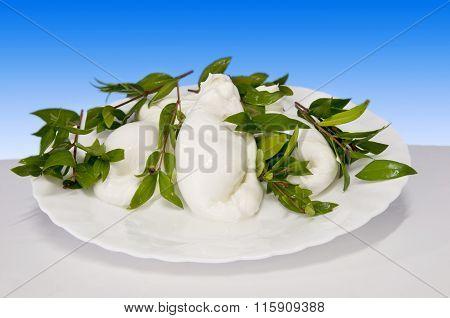 Italian Food Mortella Of Mozzarella Of Buffalo