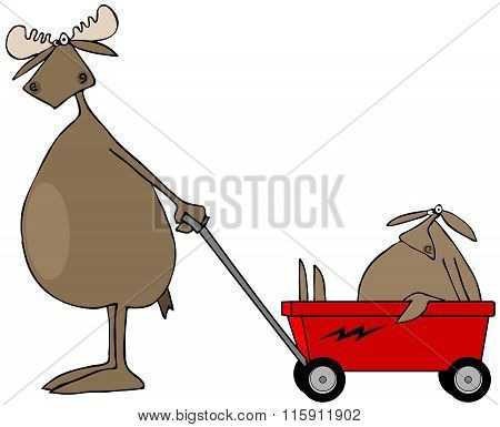 Moose pulling baby in wagon