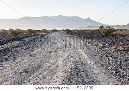 Desert Road In Oman