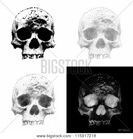 Skull 01